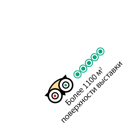 Trip Advisor - Более 1100 м2 поверхности выставки